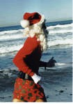 http://www.runworks.com/templates/runworksClean/images/photos/santa_running.jpg