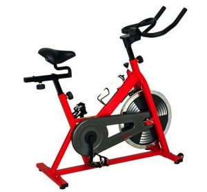 sf-b1001-exercise-bike